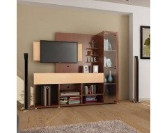 HomeTown Greta Engineered Wood Entertainment Unit  (Finish Color - Teak)